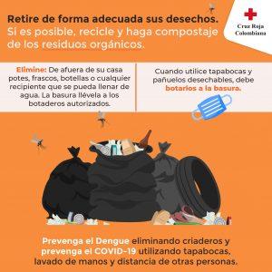 Control del Dengue